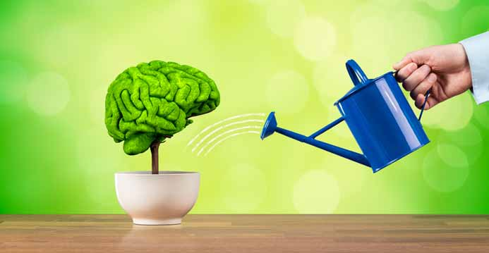 Best Ways to Improve Memory or Cognitive Functions