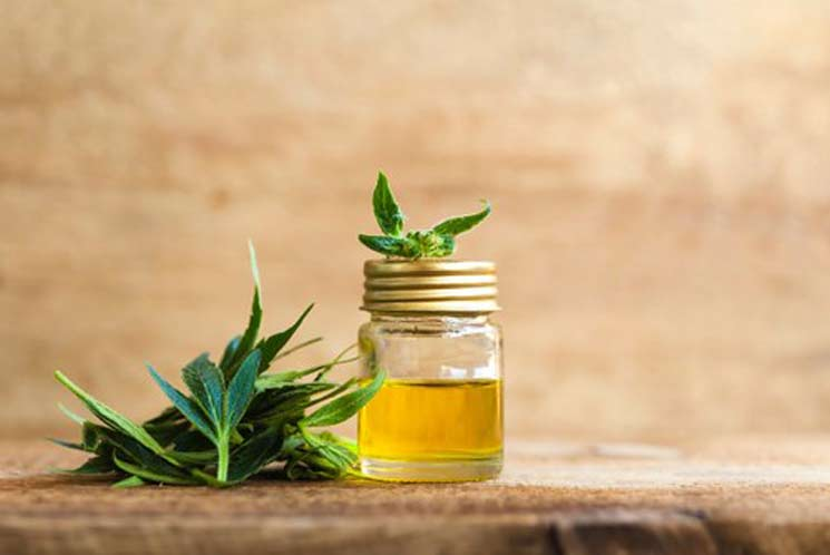 Difference Between Cbd Oil and Tincture