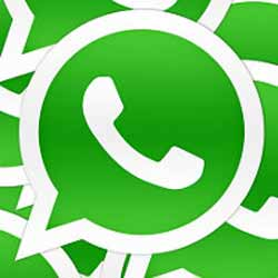How to restore Chat in WhatsApp plus