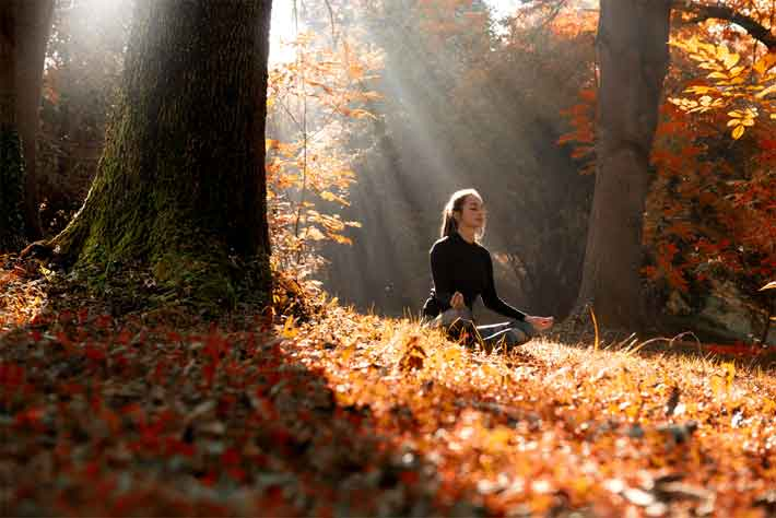 Autumn Meditations