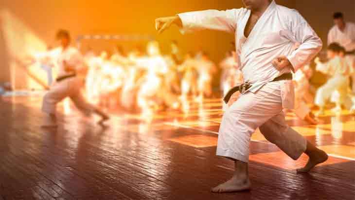 Shotokan Karate's Guide to Life